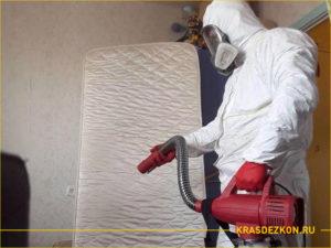 Дезинсектор обрабатывает комнату от муравьев