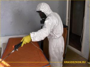 Дезинсектор обрабатывает спальню от насекомых