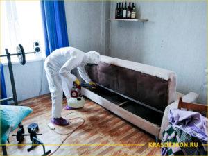 Обработка дивана в комнате от клопов